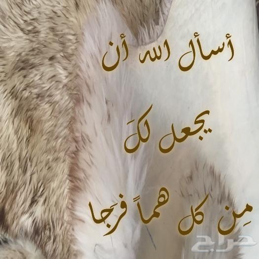 رد: محاضرة (أفلا يتدبرون القرآن) للشيخ صلاح بن محمد البدير