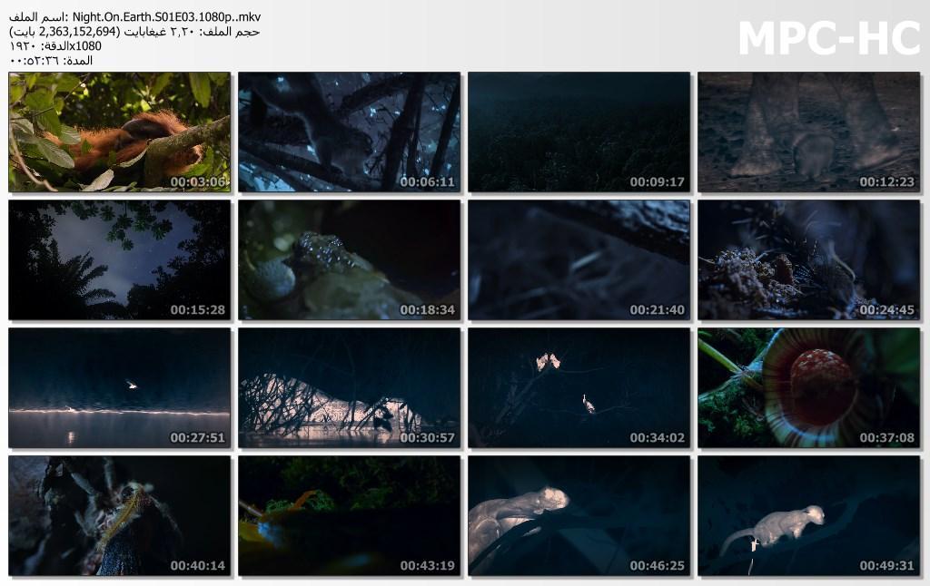 الليل على الأرض Night On Earth[مترجم] [1080p] تحميل تورنت 13 arabp2p.com