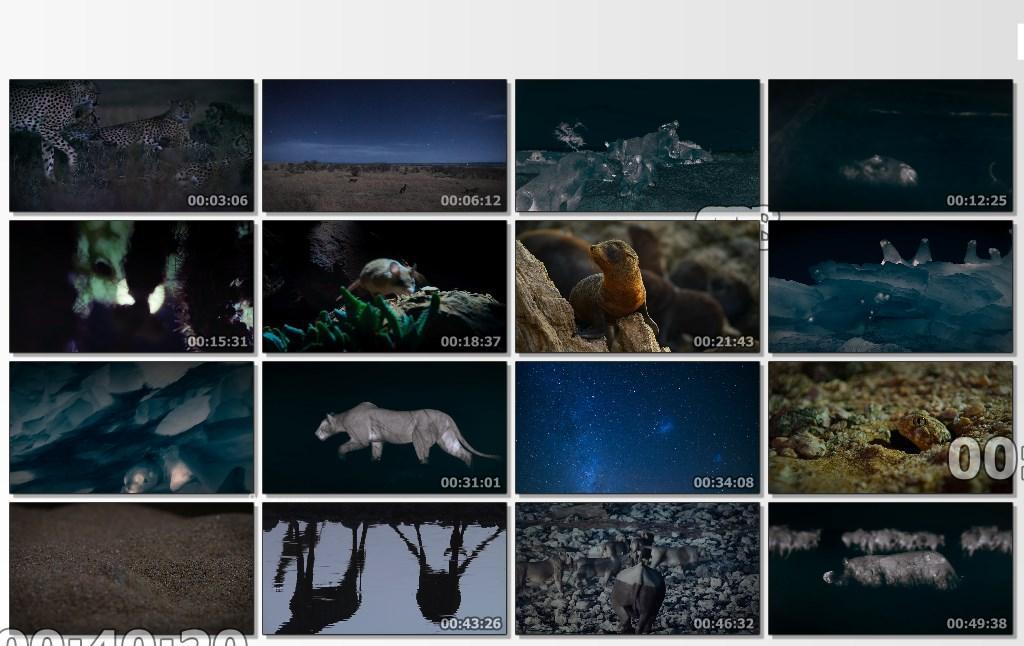 الليل على الأرض Night On Earth[مترجم] [1080p] تحميل تورنت 11 arabp2p.com