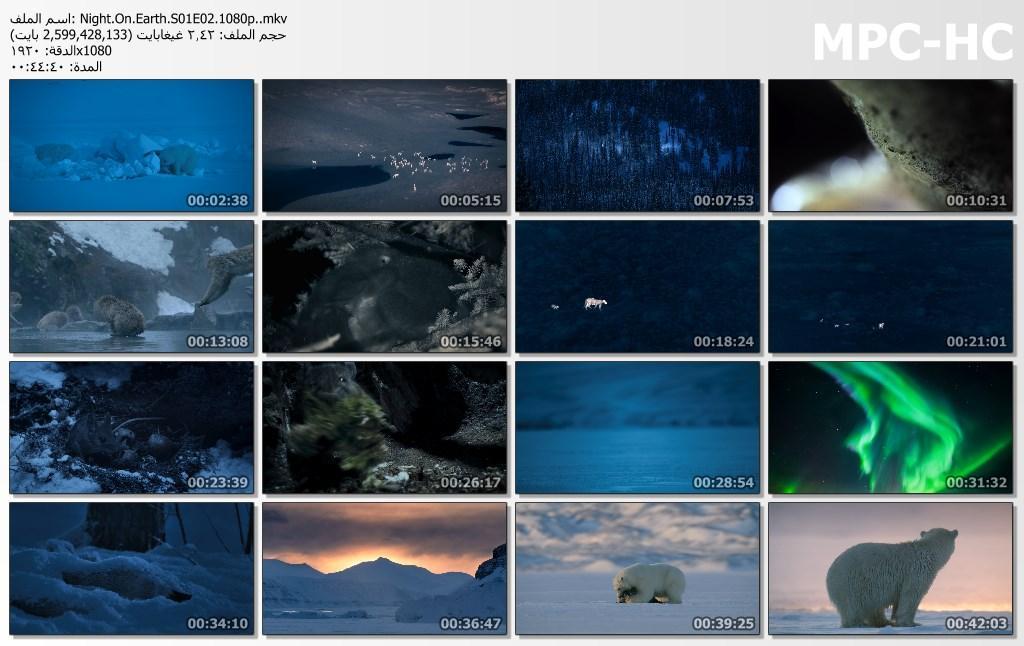 الليل على الأرض Night On Earth[مترجم] [1080p] تحميل تورنت 12 arabp2p.com