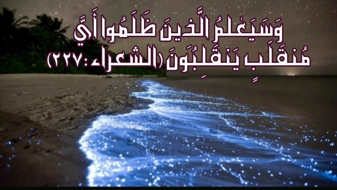رد: في عز تشاؤم واختلاف الكثبر حول هذا السهم الممل يتجدد التفاؤل من جديد